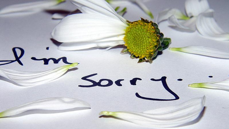 http://www.ravingsofamadwoman.com/apology.jpg